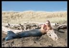 Mermaid-1-small