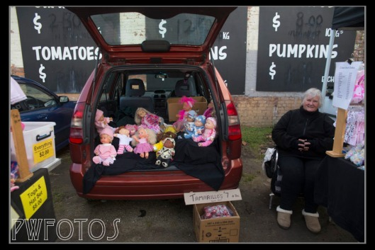 A car load of baby knitting on dolls