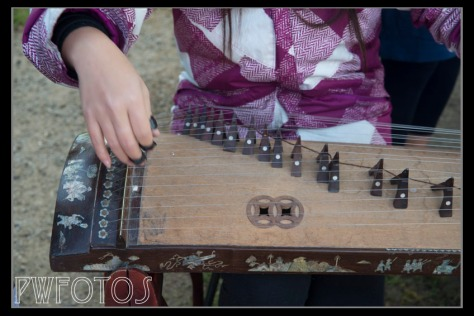 Vietnamese zither