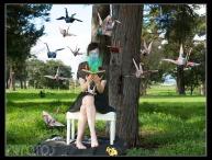 Birds#1_Small