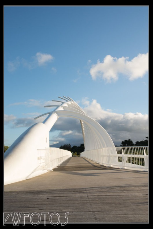 This bridge in New Plymouth is both functional and a piece of art. Mt Taranaki stays hidden in the cloud behind.