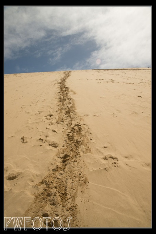 My tracks coming down the sand dune.