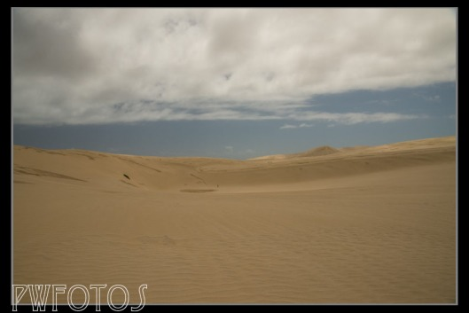Just south of the Cape are giant sand dunes that people sled down. The tiny dots in the image are people to give you some idea of scale.