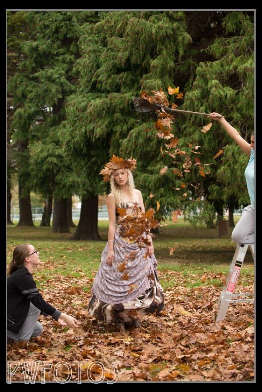 autumn-pullback