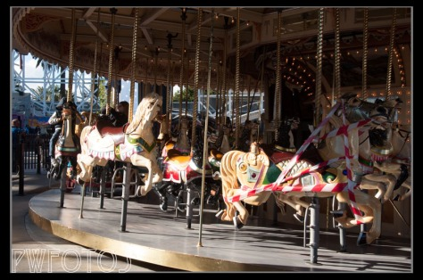 The carousel at Luna Park