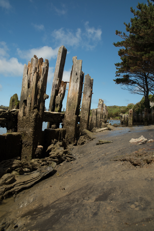The old wharf at Patea. The judge couldn't work out what it was and thought that the leading lines created by it went nowhere