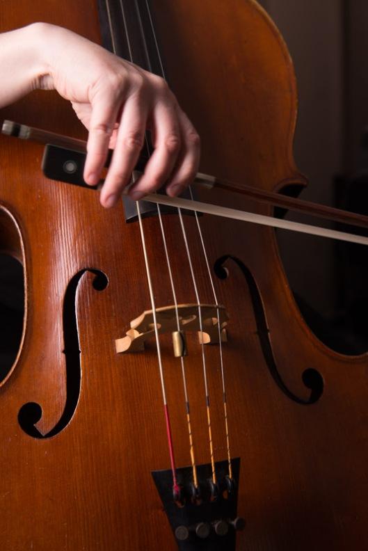 LR-Cello-4