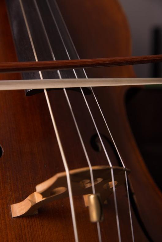 LR-Cello-5