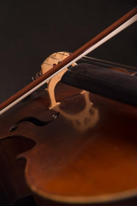 LR-Cello-7
